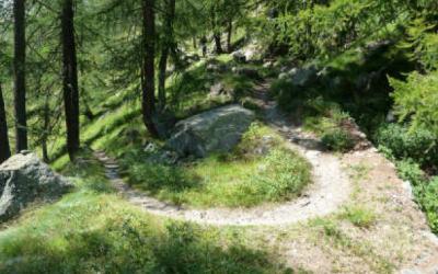 Blavy mountain bike trails area