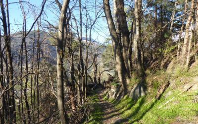 """""""Magic hicking"""" – Il Sentiero magico"""